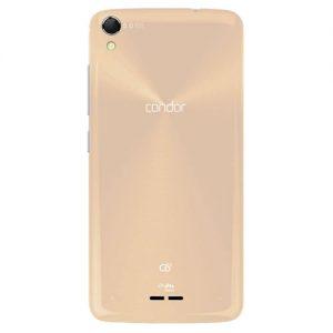 condor-C6-Gold